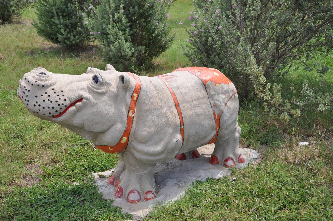 Hutto Hippo 0001
