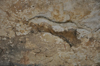 Indian Pictographs - Seminole Canyon 0014