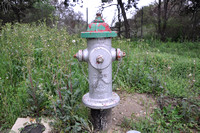 Fire Hydrant - Bell County 0001