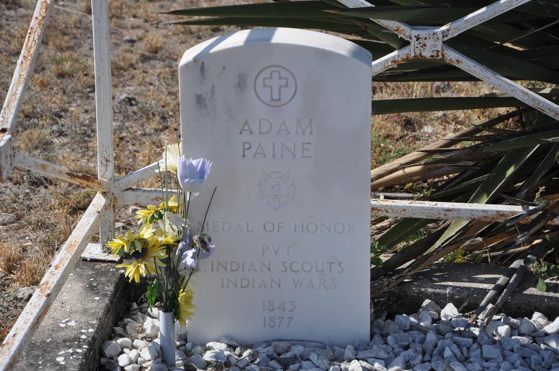 Paine, Adam